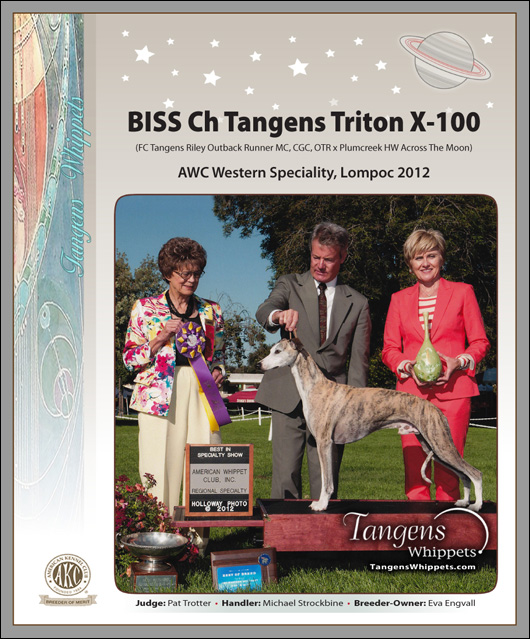 BISS Ch Tangens Triton X-100